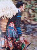 Hmong10